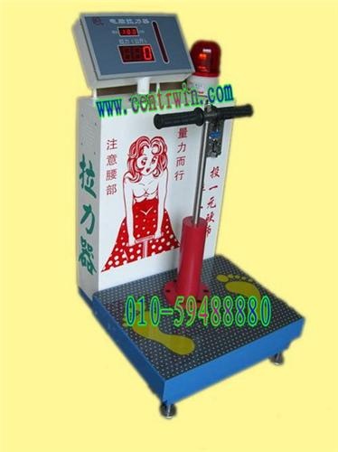 ZH2434型投币式电脑拉力器